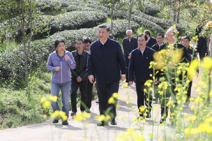 习近平考察朱熹园谈文化自信:没有中华五千年文明,哪有我们今天的成功道路