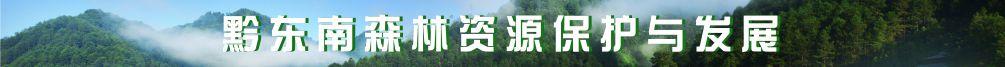 黔东南森林资源保护与发展