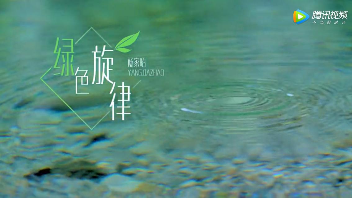 杨家昭《绿色旋律》