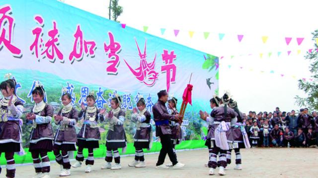 """从江县停洞镇:苗族同胞欢度""""燕子节"""""""