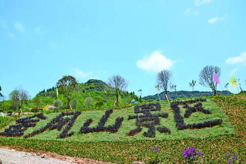 凤岭来青——金凤山